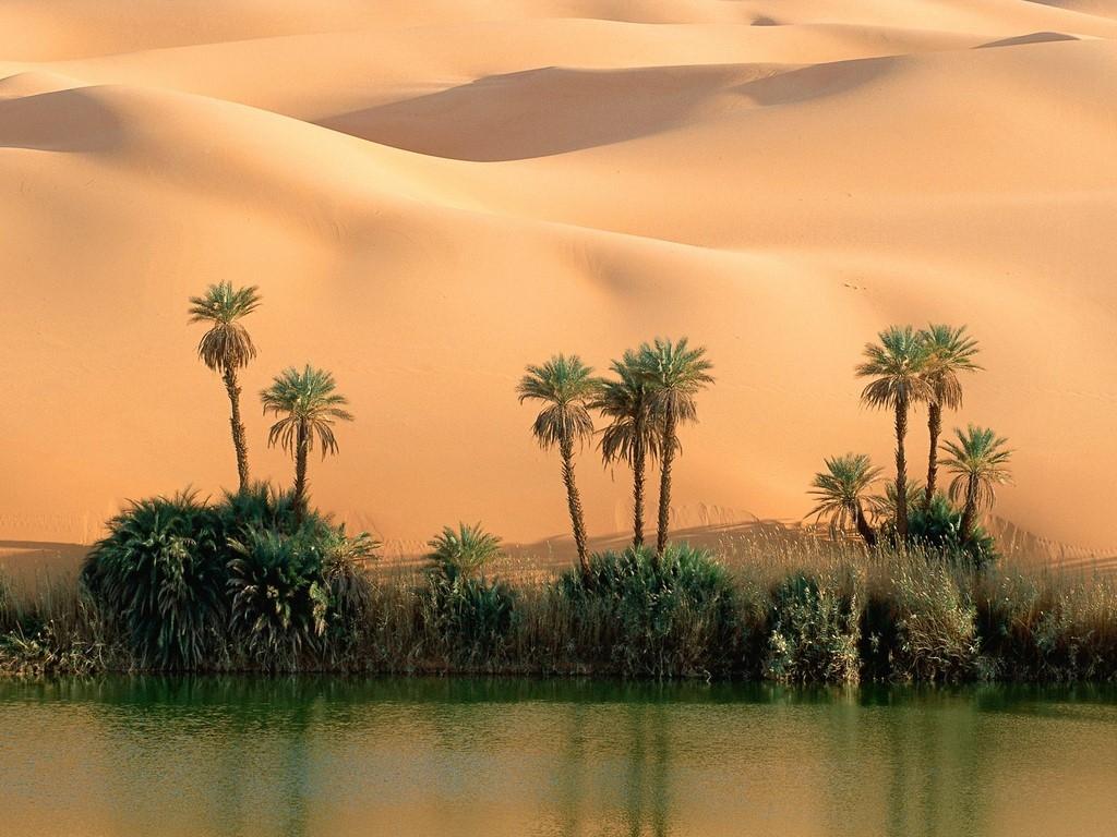 Ph_pack_2963_oasis-desert-maroc.jpg